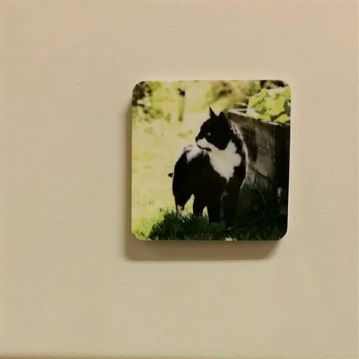 Magnet med eget foto