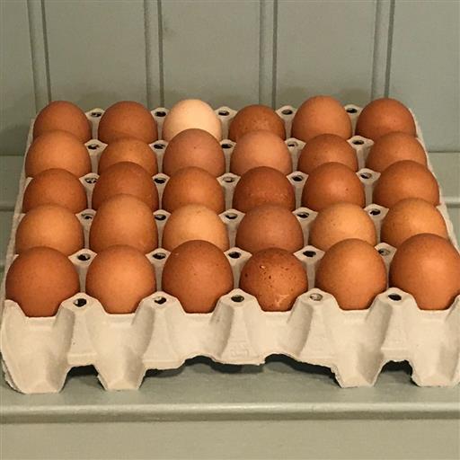 Ägg från frigående höns, Romelanda